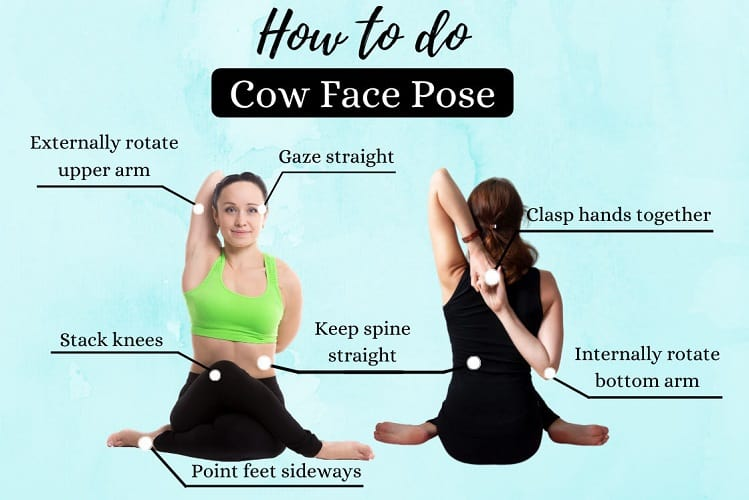 Cowface Arms